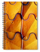 Government Cheese Spiral Notebook