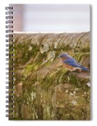 Governor's Palace Bluebird Spiral Notebook