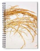 Grace Under Pressure Spiral Notebook