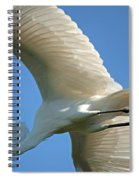 Graceful Flight Spiral Notebook