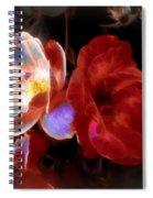 Graceful Glow Spiral Notebook