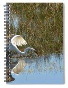 Graceful Great Egret Spiral Notebook