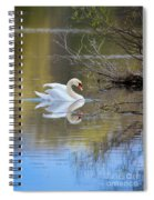 Graceful Swan Spiral Notebook