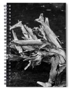 Gracefully Aging Spiral Notebook