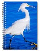 Graceland Spiral Notebook