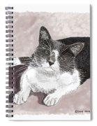 Gracie Jacks Cat Now Spiral Notebook