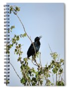 Grackle Cackle Spiral Notebook