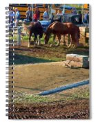 Grading The Ring Spiral Notebook