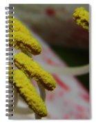 Grains Of Pollen Spiral Notebook
