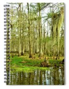 Grand Bayou Swamp Spiral Notebook