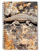 Grand Canyon Lizard Spiral Notebook