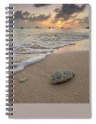 Grand Cayman Beach Coral At Sunset Spiral Notebook