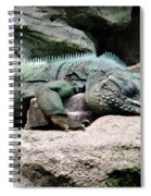 Grand Cayman Blue Iguana Spiral Notebook