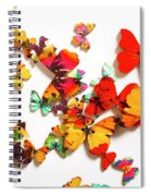 Grand Merger Of Unification Spiral Notebook