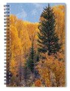 Grand Teton Fall Spiral Notebook