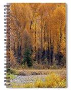 Grand Tetons Fall Spiral Notebook