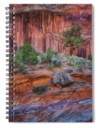 Grand Wash - Capitol Reef Spiral Notebook