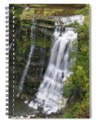 Grandaddy Burgess Spiral Notebook