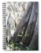 Grandfather Cypress Spiral Notebook