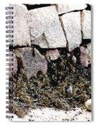 Granite And Seaweed Spiral Notebook
