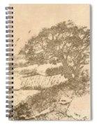 Grape Arbor On Brown Spiral Notebook
