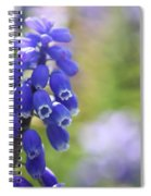 Grape Hyacinth II Spiral Notebook