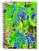 Grape Leaves Spiral Notebook