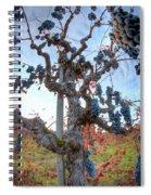 Grapes Aloft Spiral Notebook