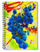 Grapes Spiral Notebook