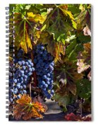 Grapes Of The Napa Valley Spiral Notebook