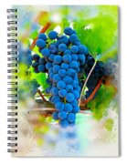 Grapes Of The Vine Spiral Notebook