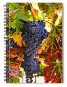 Grapes On Vine In Vineyards Spiral Notebook