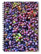 Wine Before It's Time Spiral Notebook