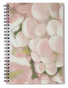 Grapes Powder Pink Spiral Notebook