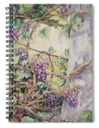 Grapevine Laurel Lakevineyard Spiral Notebook