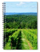 Grapevines On Old Mission Peninsula - Traverse City Michigan Spiral Notebook