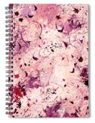 Grasping For Stars Spiral Notebook