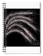 Grass Curve Coppertone Spiral Notebook
