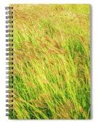 Grass Field Landscape Illuminated By Sunset Spiral Notebook