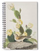 Grass Finch Or Bay Winged Bunting Spiral Notebook