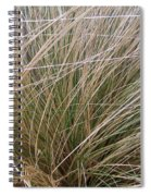 Grasses 5 Spiral Notebook