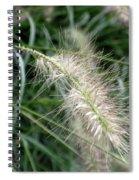 Grasses 6 Spiral Notebook