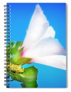 Grasshopper And Blue Sky Spiral Notebook