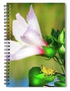 Grasshopper And Flower Spiral Notebook