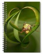 Grasshopper Twist Spiral Notebook