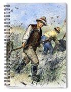 Grasshopper Plague, 1888 Spiral Notebook
