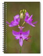 Grasspink #1 Spiral Notebook