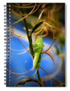 Grassy Hopper Spiral Notebook