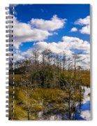 Grassy Waters 3 Spiral Notebook