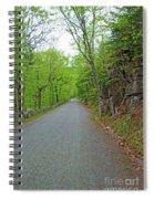 Gravel Paths Spiral Notebook